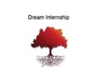 logo-dream-internship